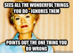 sees all the wonderful things you do - ignores them points out the one thing you do wrong Mother in law meme