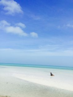 Isla Holbox. Mexican Caribbean.