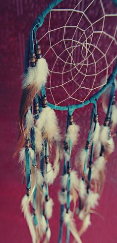 Dream free. (dream catcher,dream,beauty,photography,indie,feathers,pretty)