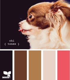 Puppy Love (photo courtesy ~ design-seeds.com) #FireAndRain