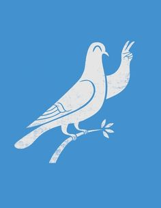 Dove wishes you peace