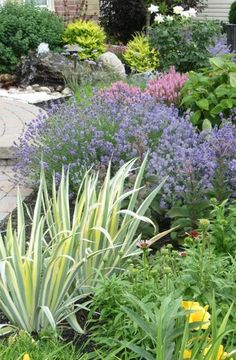 Create A Showpiece Garden With Perennials - Ladell Landscaping