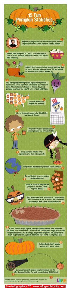 Fun Infographics 37 - http://infographicality.com/fun-infographics-37/