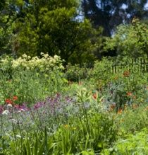Heide Gallery Vegetable Garden