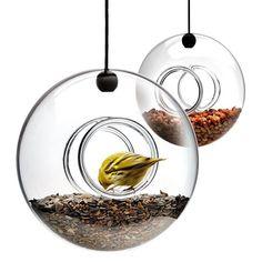 Plutôt que d'avoir un oiseau en cage, aidez les oiseaux sauvages pendant l'hiver en leur fournissant de la nourriture