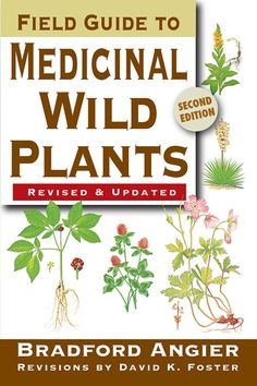 """Read """"Field Guide to Medicinal Wild Plants"""" by Bradford Angier available from Rakuten Kobo. First-ever revision of a classic guidebook. Information on each plant's characteristics, distribution, and medicinal qua. Healing Herbs, Medicinal Plants, Poisonous Plants, Edible Wild Plants, Wild Edibles, Field Guide, Survival Tips, Survival Skills, Compost"""