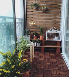 우리집 베란다에도 봄이 왔음 #self#interior#garden#balcony#flowers#spring#셀프인테리어#베란다#가드닝#화분#봄#집스타그램
