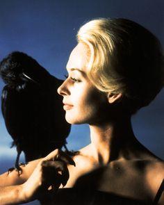 Tippi Hedren in publicity still for The Birds (1963, dir. Alfred Hitchcock)
