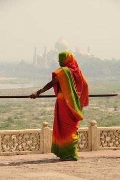 Taj in the background