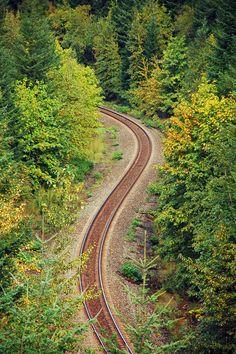 https://flic.kr/p/aKnEDx | Forest railroad | Railway running through autumn forest