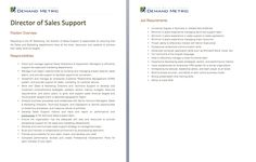Director Of Sales Support Job Description   A Template To Quickly Document  The Role And Responsibilities