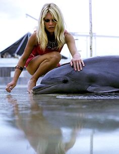 Brigitte Bardot plays with a dolphin in 1970