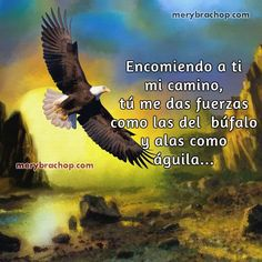 alas de aguila fuerzas de Dios oracion Wisdom Quotes, Life Quotes, John 16 33, Betty Boop Pictures, Lord, Pretty Birds, Quotes About God, Faith In God, Ocean Beach