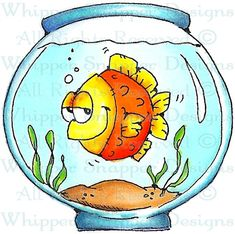 Frisco - Fish - Animals - Rubber Stamps - Shop
