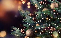Download wallpapers christmas tree, New Year, glare, Merry christmas, Happy New Year, xmas tree, Christmas