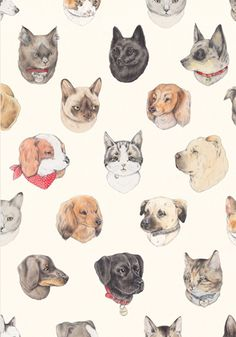 Cats & Dogs print pattern