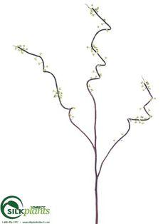 Vine - Brown Green - Pack of 12