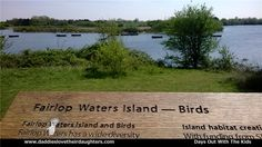 For the nature lovers this really is the place for you as there are little places to go venturing off to see the local wild life and on the lake you have the opportunity to go sailing and fishing.  #daddieslovetheirdaughters #placestotakethekids #placestogo #travel #beautifullocations #fairlopwaters #redbridge #kids #nature #boatinglake