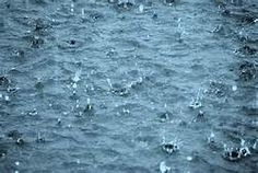 beautiful rain drops - Yahoo Search Results Yahoo Image Search Results