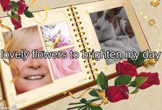 my family album Family Album, My Family, Day, Frame, Flowers, Floral, Frames, Royal Icing Flowers, Florals