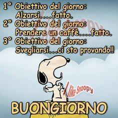 Snoopy: obiettivi del giorno  - 11976