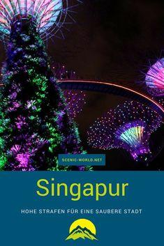 Singapur ist extrem sauber! Es gibt ja auch hohe Strafen, um die Stadt sauber zu halten.