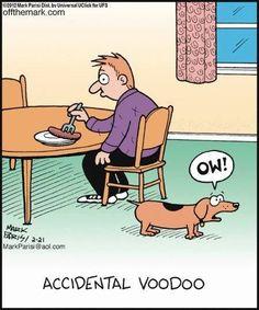 Accidental voodoo. Funny animals humor