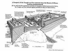 Fortress Antonia and Jewish Temple as presented by Josephus the Jewish historian . Check out this web site and you decide . But it isn't where the Dome of the Rock sits .   http:/askelm.com/temple/t980504.htm