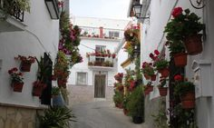 calles con encanto, CANILLAS DE ACEITUNO