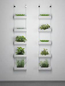 Si no tienes terraza en casa, ¡no te preocupes! Descubre cómo montar un pequeño jardín o un mini huerto.