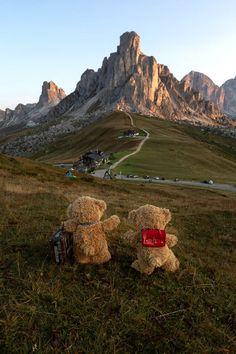 Cute Teddy Bear Pics, Teddy Bear Party, Cute Bears, Teddy Bears, Teddy Bear Pictures, Love Bear, Tatty Teddy, Love Photos, Fun To Be One