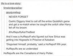 Hufflepuffs are the Canadians of Harry Potter... Um