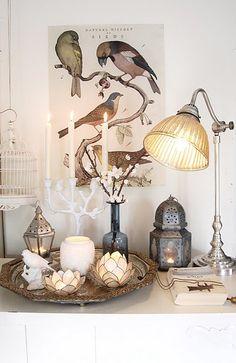 more birds via sodb