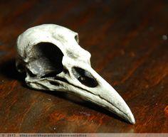 Crow Bird Skull Resin Replica- Corvus brachyrhynchos- black patina von arcticphoenixstudios auf Etsy https://www.etsy.com/de/listing/163756451/crow-bird-skull-resin-replica-corvus