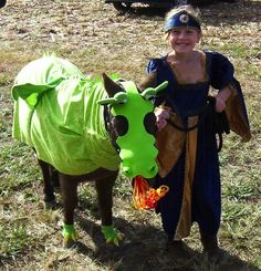 okat this girl is going a loittle bit over board with dressing a donkey up in a ftekaing costume i mean it looks toatally cutte jjust not her. Fire Costume, Dragon Costume, Horse Halloween Costumes, Animal Costumes, Horse Fancy Dress, Dragon Vert, Puff The Magic Dragon, Western Pleasure Horses, Dragon Horse