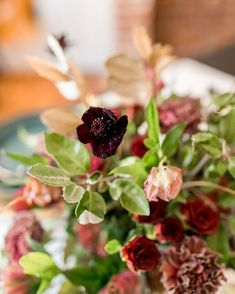 Close up of the They kinda look like butterflies, dont they? Wedding Centerpieces, Wedding Bouquets, Wedding Flowers, Autumn Wedding, Diy Wedding, Scabiosa Flowers, Wedding Colors, Wedding Styles, Burgundy And Gold