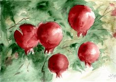 Pomegranate by ~alessium on deviantART