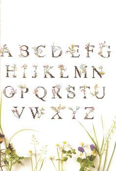 Gallery.ru / Фото #41 - Helene le Berre - Le langage des fleurs - velvetstreak