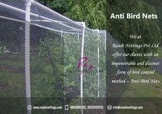 #Anti-Bird_Net: A Permanent Solution to Get Rid of #Birds and protect your buildings by birds and other species Damages and provided Harmless Bird Controlling Product also.