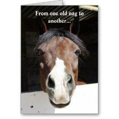 Horse Happy Birthday Card