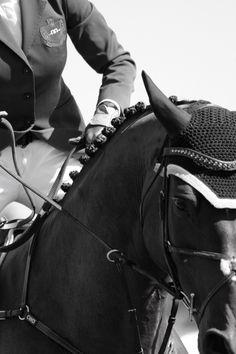 The Equestrian Survival Guide | ZsaZsa Bellagio - Like No Other