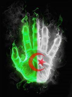 29 Meilleures Images Du Tableau Algerie Drapeau Algerie