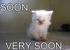 Soon ..Very Soon