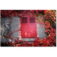 Trademark Fine Art Red Windowpane Canvas Art by Philippe Sainte-Laudy, Size: 30 x 47, Multicolor