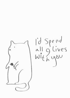 Id spend all 9 lives with you love love quotes quotes quote cat crush kitty quotes and sayings image quotes picture quotes 9 lives Crazy Cat Lady, Crazy Cats, The Words, I Love Cats, Love You, Hate Cats, Funny Valentines Cards, Valentine Stuff, Printable Valentine