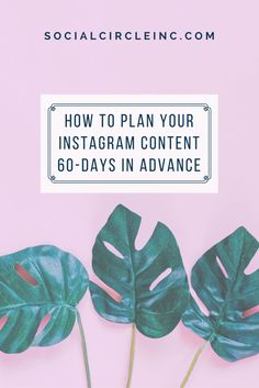Planning my Instagram content 60-days in advance has allowed me to maintain a strong social media presence during times I'm feeling overtaxed or busy. Here's my foolproof process for planning my Instagram content 60 days in advance.