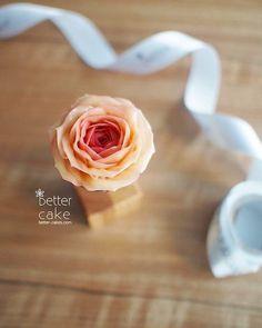 Done by me / BETTER CAKE . Any inquiries about my class, plz contact as follows  bettercakes@naver.com  New class for real flowers style is coming soon  . www.better-cakes.com #buttercream#cake#korea#baking#koreanbuttercream#bettercake#버터크림케익#베러케익#yummy#flower#꽃#sweet#플라워케익#foodporn#birthday#wedding#디저트#foodie#dessert#버터크림플라워케이크#follow#food#koreancake#beautiful#flowerstagram#instacake#like#꽃스타그램#koreastyle#instafood#