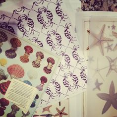 Researching shell prints. #ecru #shells #prints #homewear #starfish