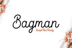 Bagman - Script Font Family by ShowUp! Typefoundry on @creativemarket #simple #round #type #ad