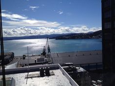 view from my window in wellington - Google Search